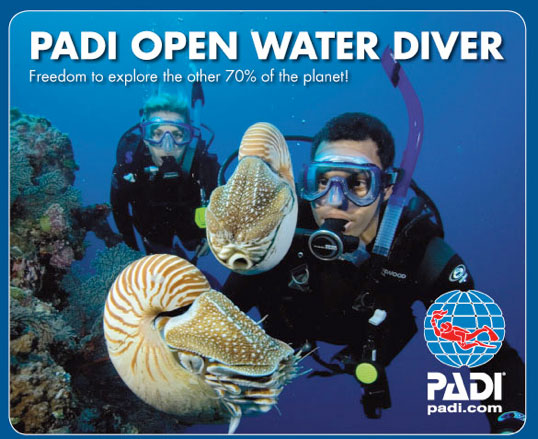 PADI Open Water Referral Diver